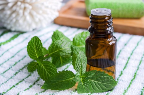 The health benefits of peppermint oil