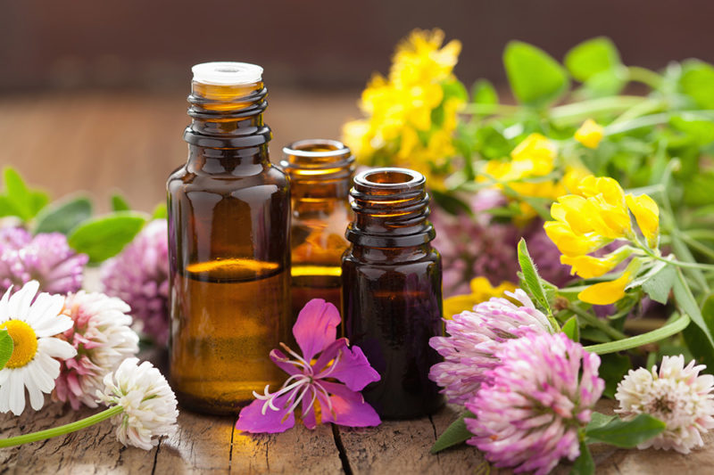 beautiful summer flowers and essential oils