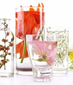 Hydrosol Floral Waters